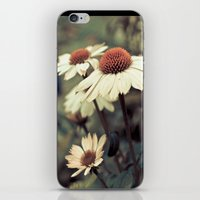 Soft white cone flower  iPhone & iPod Skin