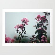 Soft Hues Art Print