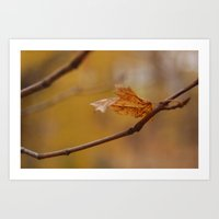 Leaves of Change 2 Art Print