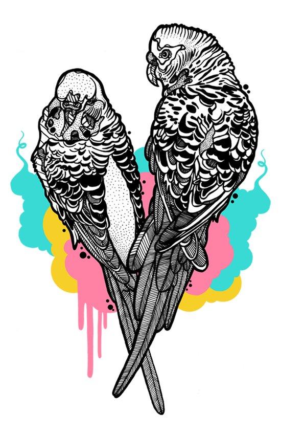 Pretty Budgies Art Print