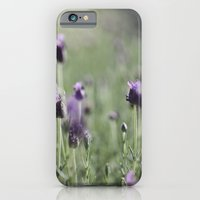 Lavender In Summer Light iPhone 6 Slim Case