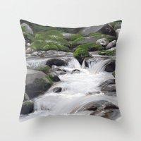 Waterville #4 Throw Pillow