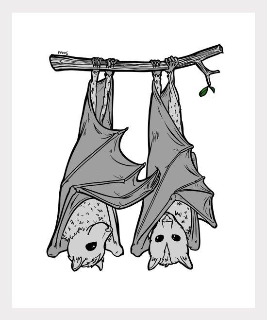 Tickle Bats Canvas Print