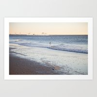 Birdy Beach  Art Print