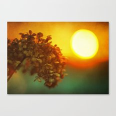 Sunlight in Her Hair Canvas Print