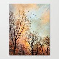 January Canvas Print