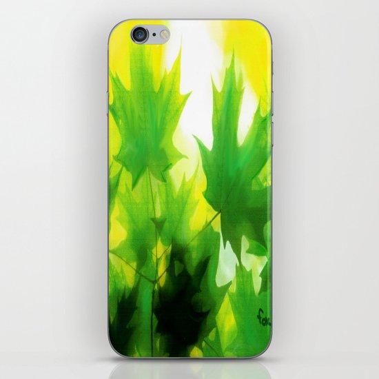 MAPLE DAWN iPhone & iPod Skin