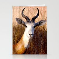 you lookin' at me?  Stationery Cards