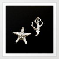 Starfish Seashell Art Print