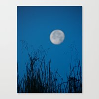 Faded Moon Canvas Print