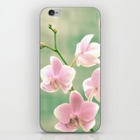 Orchid Ⅱ iPhone & iPod Skin