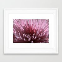 Lilac Spray Framed Art Print