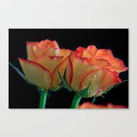 My Mothers Day Roses Canvas Print