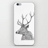 Stag N.1 iPhone & iPod Skin