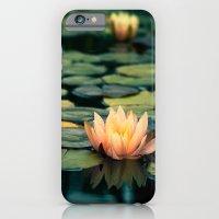 Celladora iPhone 6 Slim Case