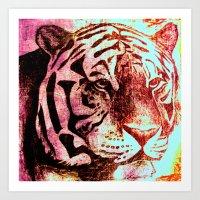 Sunset Tiger Art Print