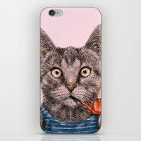 Sailor Cat IX iPhone & iPod Skin