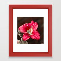 Summer Sprung 2 Framed Art Print