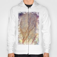 Galaxy + Nature Reflection Hoody