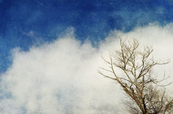 the tree and the cloud Art Print