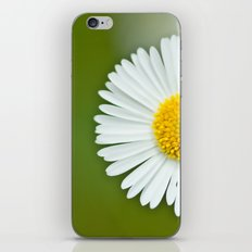 One little Daisy 184 iPhone & iPod Skin