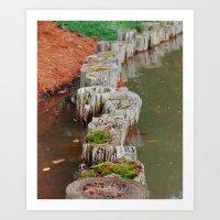 Stumps Art Print