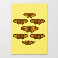 Butterfly Print Canvas Print