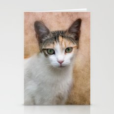 little kitty Stationery Cards