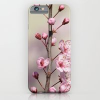 cherry blossom iPhone & iPod Cases featuring Cherry Blossom by Zen and Chic