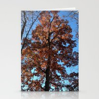 Oak Tree at Dawn Stationery Cards
