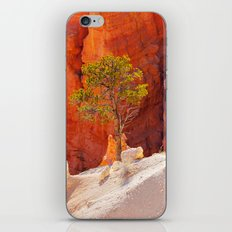 Bryce Canyon. iPhone & iPod Skin