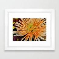 Floral Poof! Framed Art Print