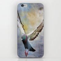 Pigeon On Wing iPhone & iPod Skin