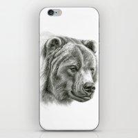 Brown Bear G2012-054 iPhone & iPod Skin