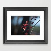Winter Berries II Framed Art Print