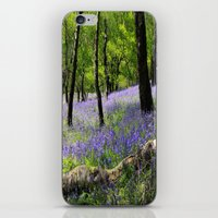 Bluebell Wood. iPhone & iPod Skin