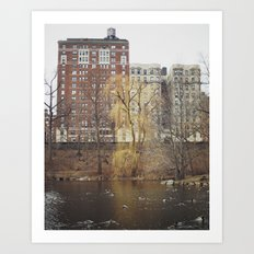 Central Park North Art Print