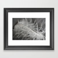 feather Framed Art Print