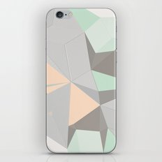 Origami II iPhone & iPod Skin