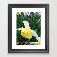 Spring! Framed Art Print