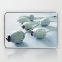Poppy seed capsule Laptop & iPad Skin