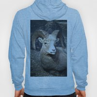 Tom Feiler Mountain Goat Hoody