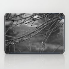 Aranea Ornament iPad Case