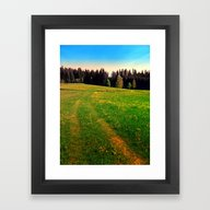 Outdoors In Sunny Spring Framed Art Print