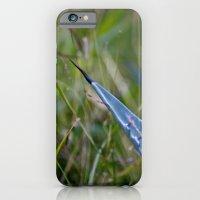 Cactus iPhone 6 Slim Case