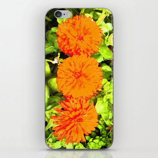 Pop Art Flowers iPhone & iPod Skin