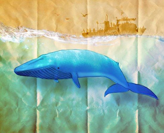 the beauty beneath _ humpback whale Art Print
