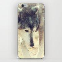 Wolfs Beauty iPhone & iPod Skin