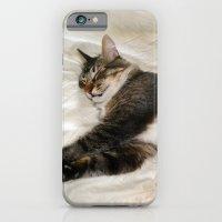 Cat Dreaming iPhone 6 Slim Case