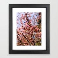 Spring comes suddenly Framed Art Print